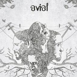 Avial Profile Pic