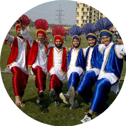 Bhangra Lions and Queens Profile Pic