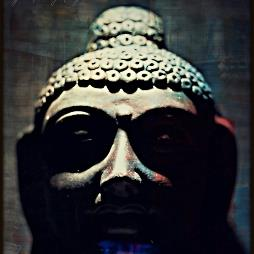 The Buddha Therapy Profile Pic